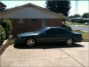 William's Impala